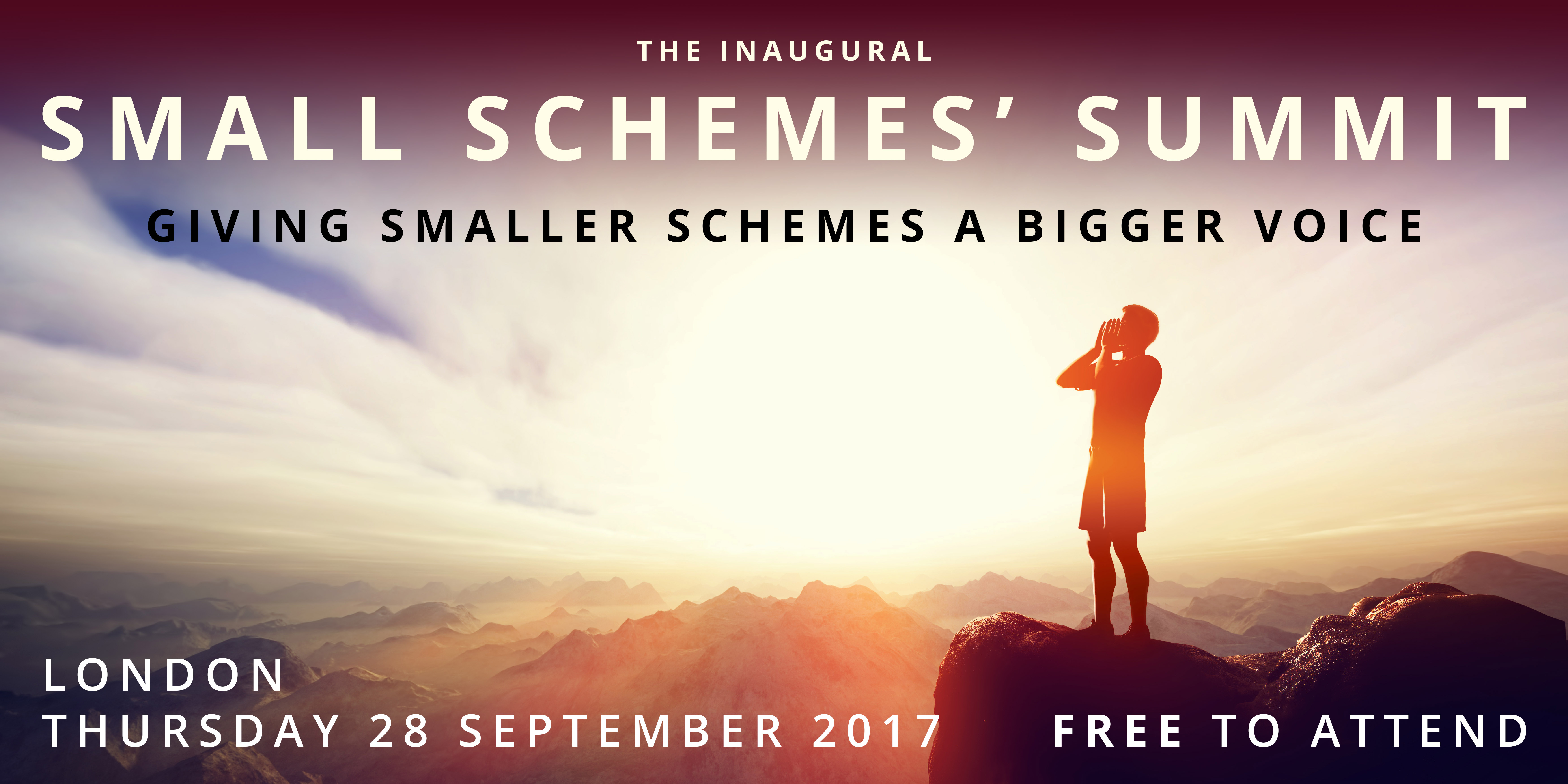 The Inaugural Small Schemes' Summit